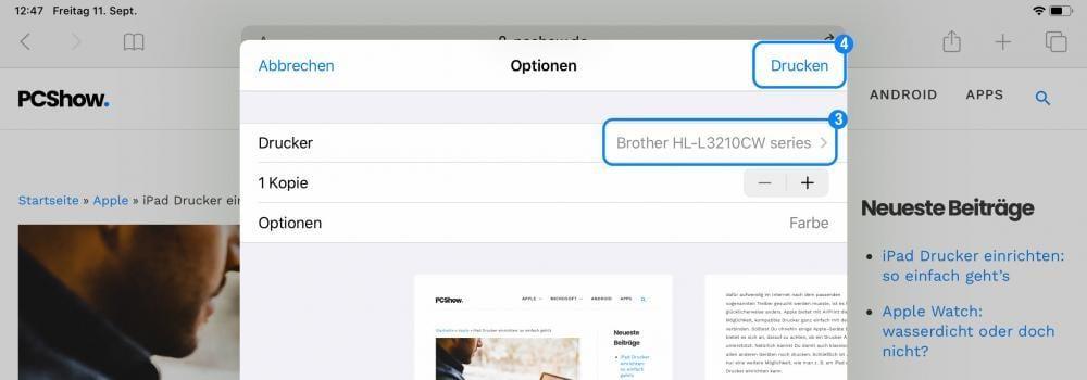 iPad Drucker auswählen